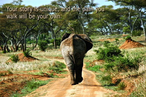elephant-pic-500x333